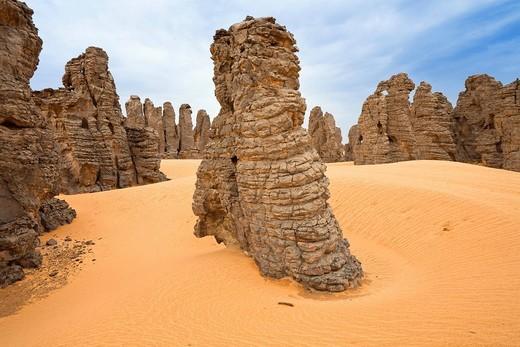 Stock Photo: 1848R-517726 Stone desert, Tassili Maridet, Libyan Desert, Libya, Sahara, North Africa, Africa