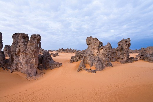 Stone desert, Tassili Maridet, Libyan Desert, Libya, Sahara, North Africa, Africa : Stock Photo