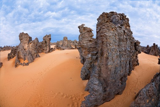 Stock Photo: 1848R-517732 Stone desert, Tassili Maridet, Libyan Desert, Libya, Sahara, North Africa, Africa