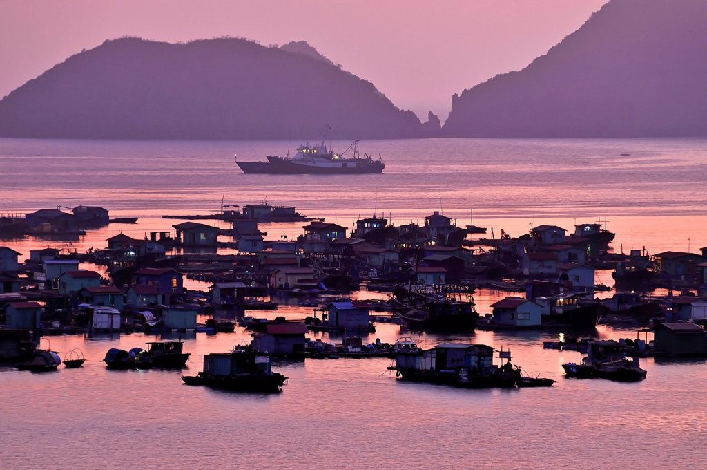 Stock Photo: 1848R-518196 Harbour of Cat Ba, Halong Bay, Vietnam, Southeast Asia
