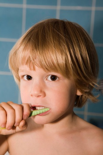 Stock Photo: 1848R-519295 Four_year_old blond boy brushing his teeth