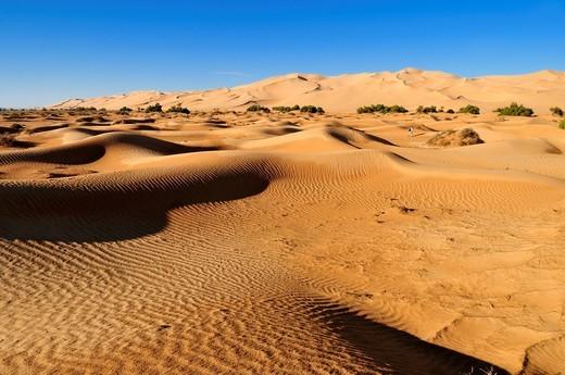 Stock Photo: 1848R-523375 Sand dunes of Erg Admer, Wilaya Illizi, Algeria, Sahara, North Africa