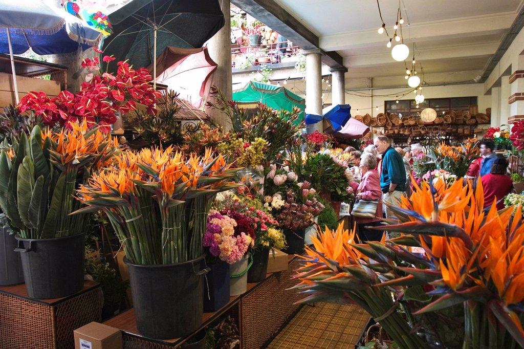 Stock Photo: 1848R-524049 Market hall Mercado dos Lavradores in Funchal _ Madeira _ flower market