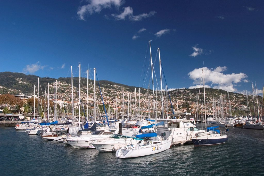 Stock Photo: 1848R-524064 Funchal _ Marina _ Madeira