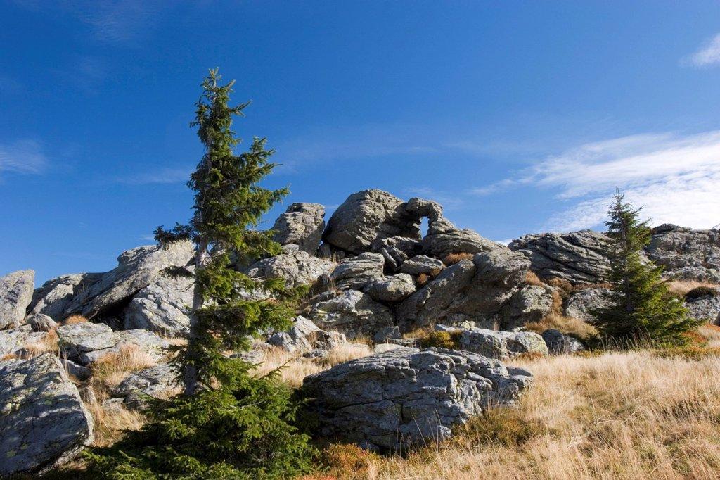 Stock Photo: 1848R-524735 Grosser Arber mountain Bavarian Forest Germany