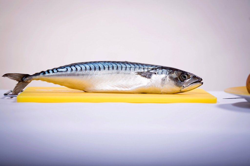 A fish on a cutting board : Stock Photo