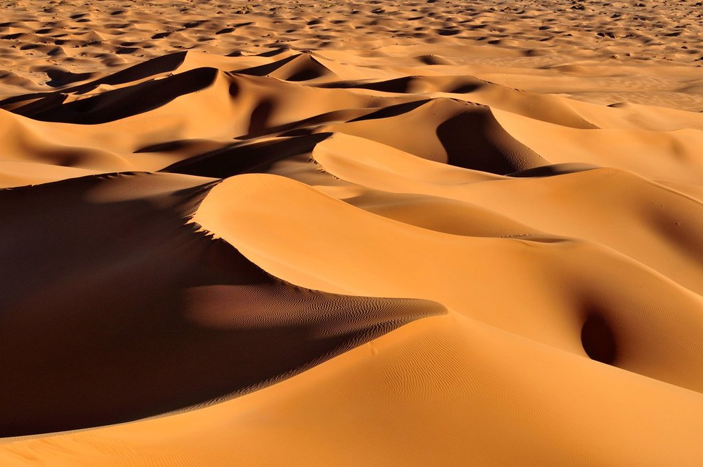 Stock Photo: 1848R-633879 Morning light on sand dunes at Erg Tihoulahoun, Immidir, Algeria, Sahara, North Africa