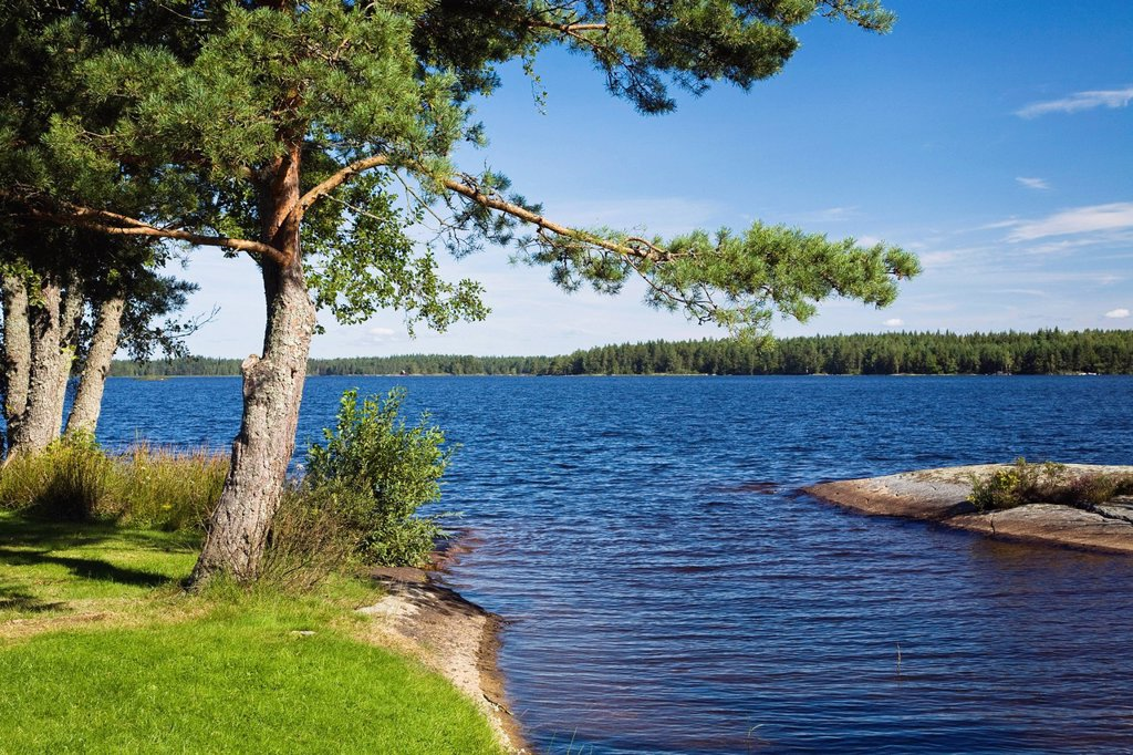 Stock Photo: 1848R-634297 Lake Bysjoen, Smaland, South Sweden, Scandinavia, Europe