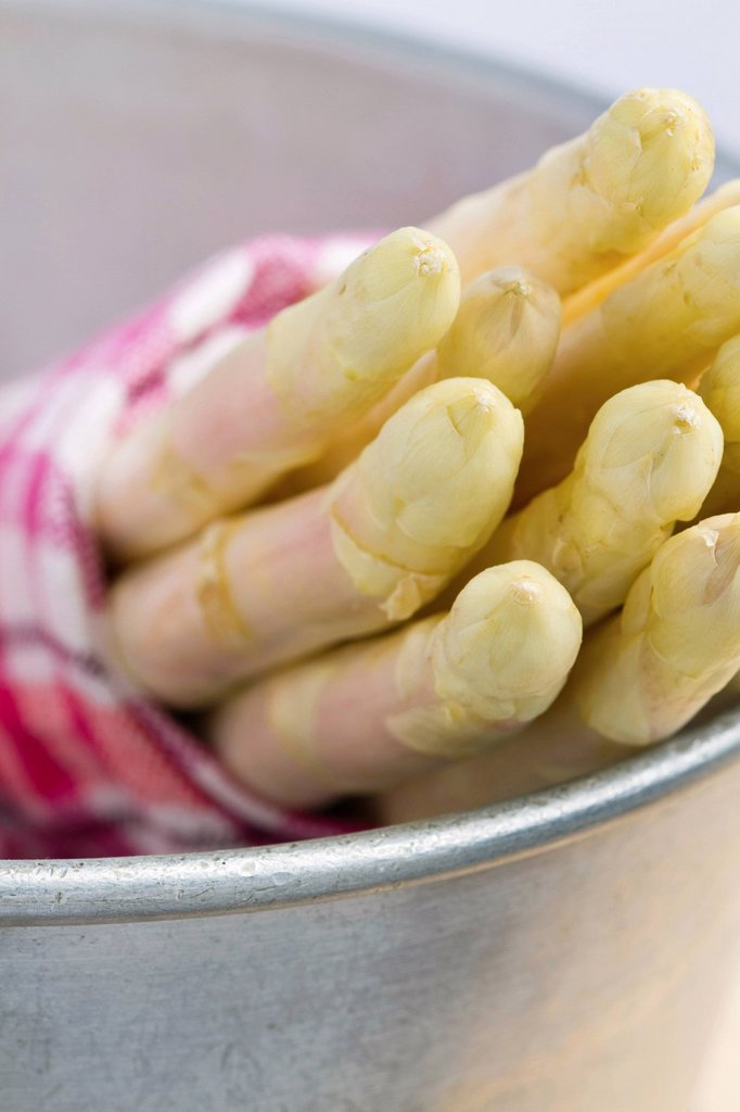 Stock Photo: 1848R-636169 Asparagus