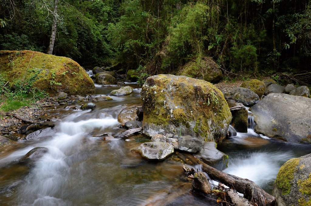 Stock Photo: 1848R-636615 River head of the Rio Savegre river, San Gerardo de Dota, Costa Rica, Central America