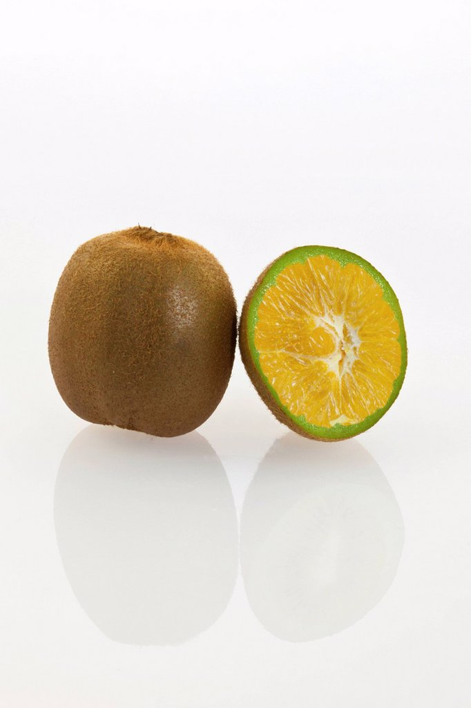Stock Photo: 1848R-637121 Genetically modified kiwi fruit, kiwi fruit with genes of an orange