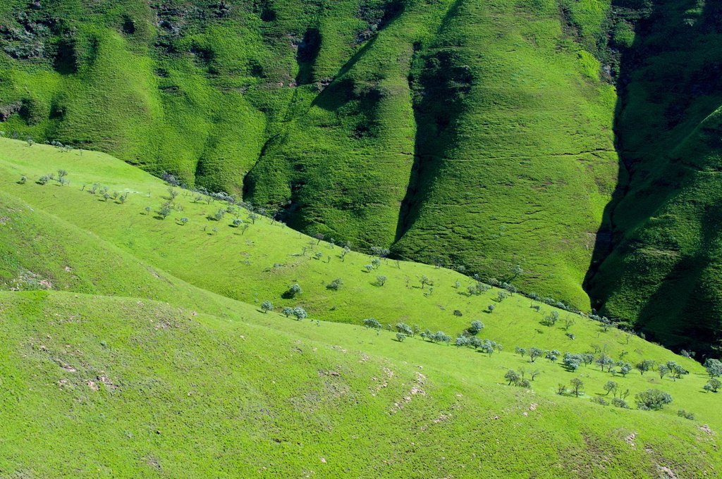 Stock Photo: 1848R-638222 Green countryside, foothills of the Drakensberg Mountains, Free State, South Africa, Africa