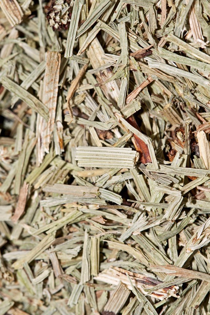 Stock Photo: 1848R-638947 Horsetail tea, organic tea
