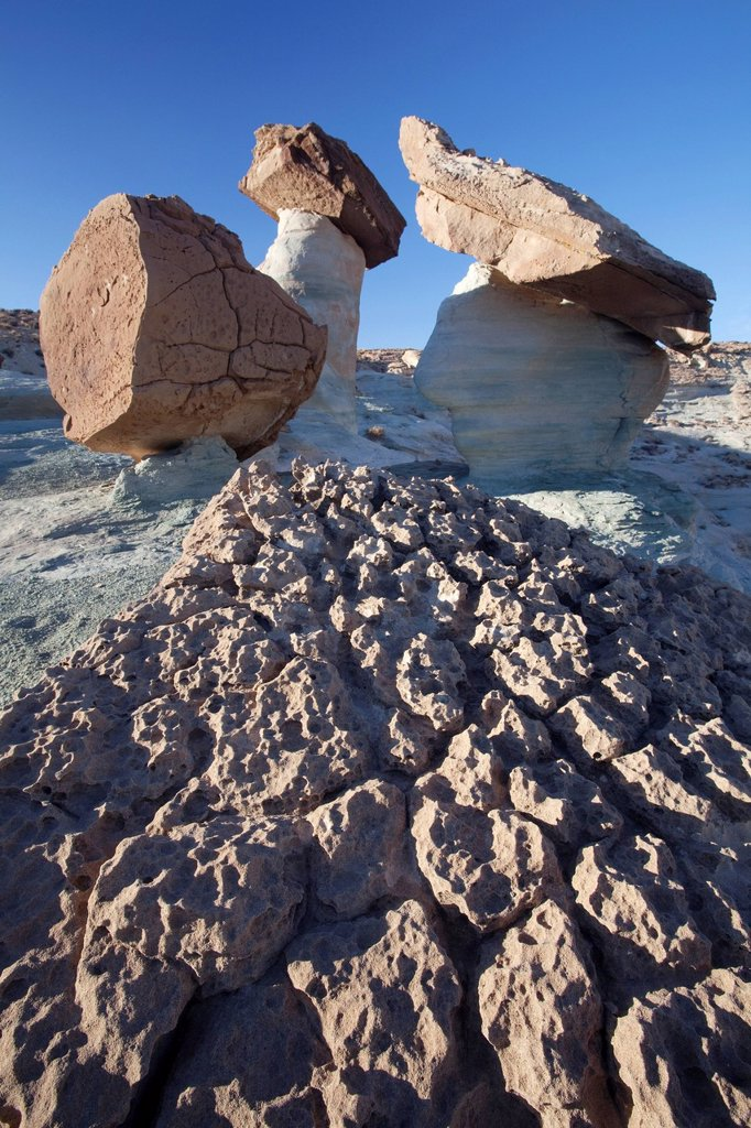 Stock Photo: 1848R-640893 Hoodoo at Stud Horse Point with moon, Utah, USA, America
