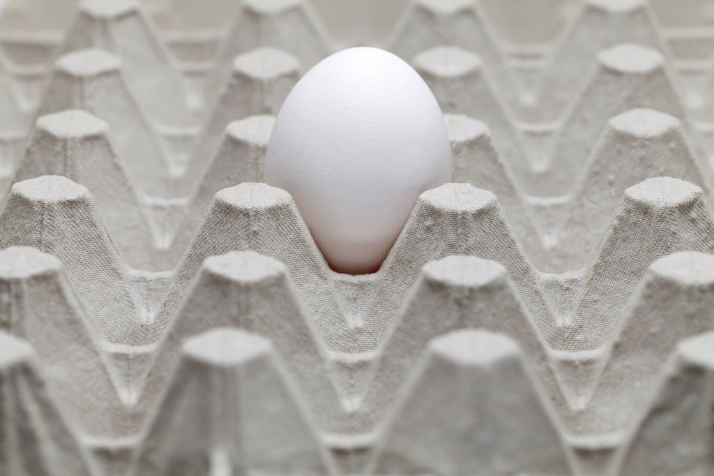 Stock Photo: 1848R-645227 Single egg in an egg carton