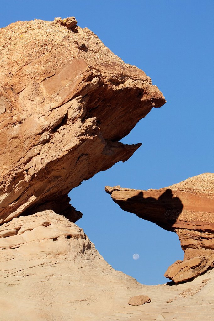 Hoodoo at Stud Horse Point with moon, Utah, USA, America : Stock Photo