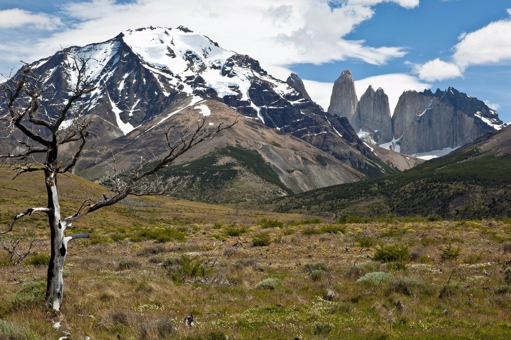 Stock Photo: 1848R-749658 View of the steep peaks of the Torres del Paine granite mountains, Torres del Paine National Park, Magallanes Region, Patagonia, Chile, South America, Latin America, America