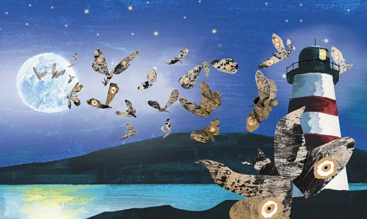 Moths attracted to full moon : Stock Photo