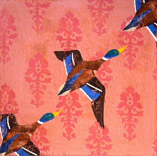 Ducks flying in formation against wall paper : Stock Photo