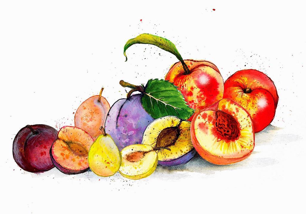 Still life variety of fruits : Stock Photo