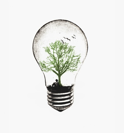 Stock Photo: 1849-542 Tree growing in light bulb