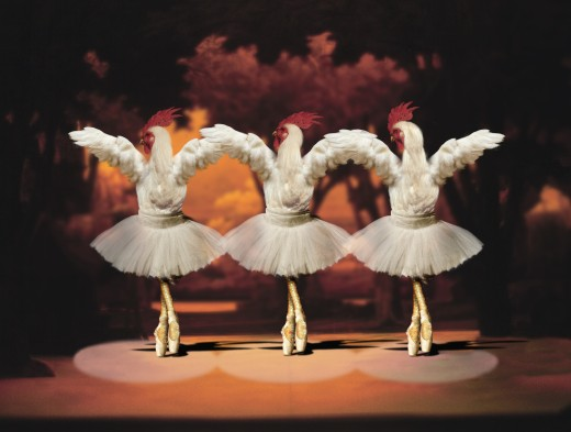 Roosters dancing ballet : Stock Photo