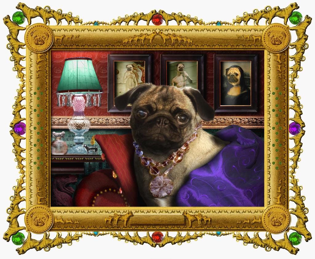 Stock Photo: 1849-803 Ornate portrait of dog in glamorous clothing