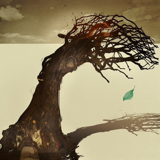Stock Photo: 1849-867 Dead tree with green leaf dropping from it
