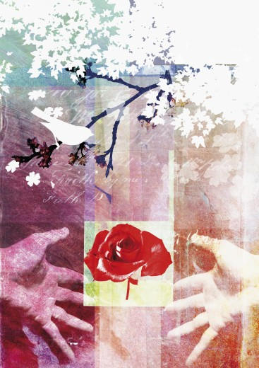 Collage of rose, bird, hands and tree : Stock Photo