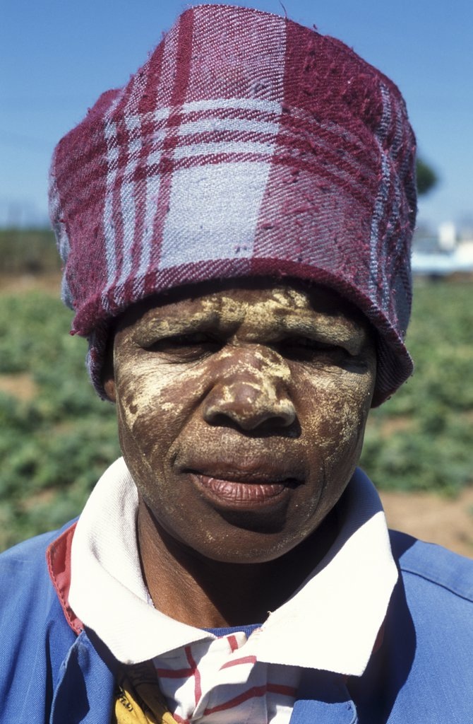 South Africa, Western Cape, Stellenbosch, Portrait Of An Agricultural Farm Worker At Mooiberg Fruit And Vegetable Farm : Stock Photo