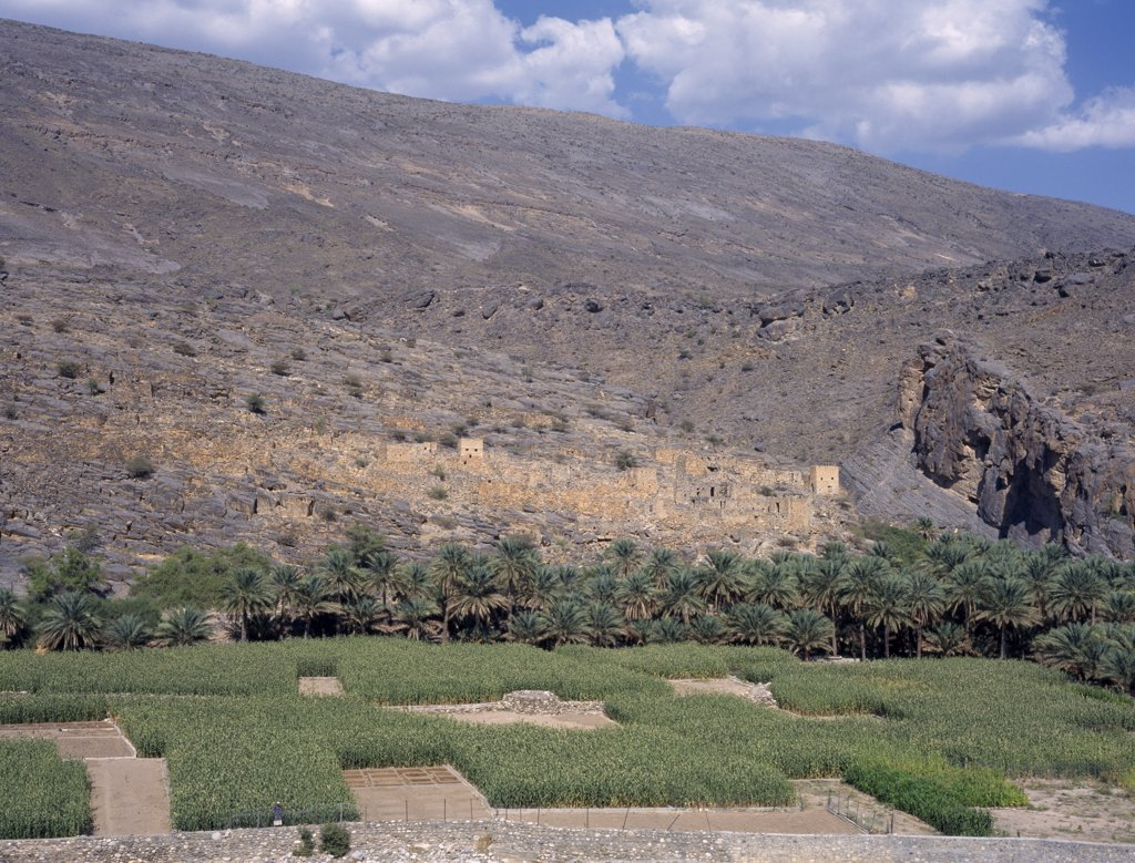 Oman, Wadi Ghul, Oasis And Agricultural Land Near Nizwa. : Stock Photo