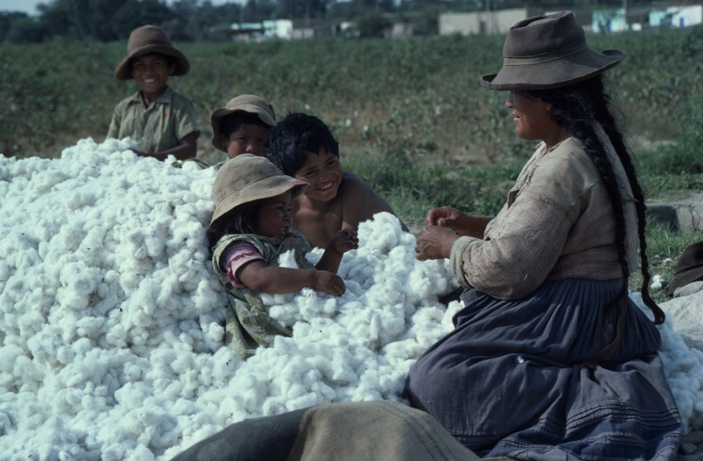 Stock Photo: 1850-11220 Peru, Ica, Woman And Children With Harvested Cotton Bols.