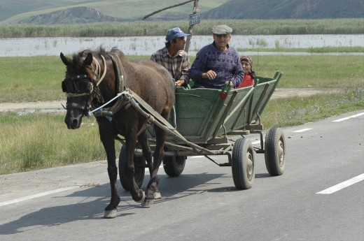 Stock Photo: 1850-11763 Romania, Northern Dobtuja, Harsova, Traditional Horse Drawn Cart Carring People Along The Road