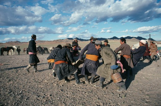 Stock Photo: 1850-12253 Mongolia, Southern Gobi, Men Stretching Felt For A Yurt As Part Of A Traditional Wedding Ceremony.