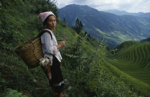 China, Guangxi Province, Longsheng, Woman On Steep Pathway Above Rice Terraces Carrying Woven Basket On Her Back. : Stock Photo