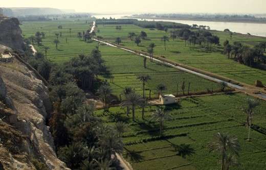 Stock Photo: 1850-1396 Egypt, Nile Valley, El Minya, Irrigation Canal Near El Minya