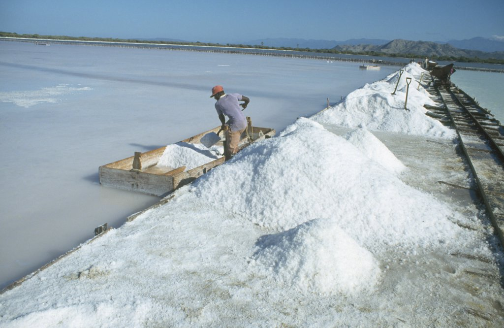Dom.  Republic, Las Salinas, Workers Mining Salt. : Stock Photo