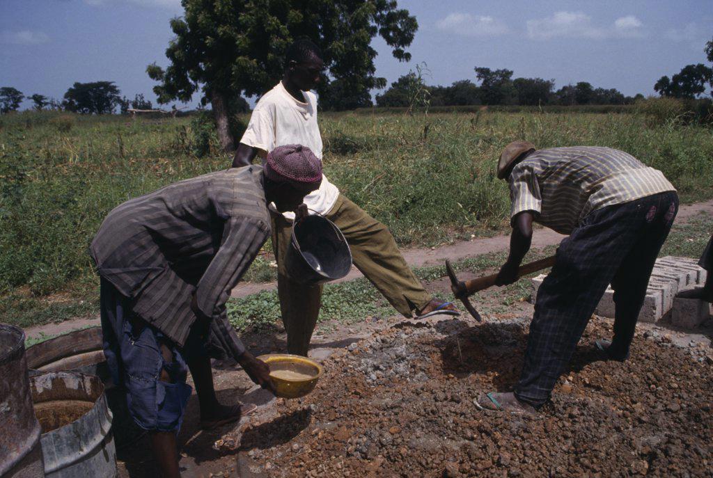 Stock Photo: 1850-16445 Gambia, People, Work, Men Building Rural School.