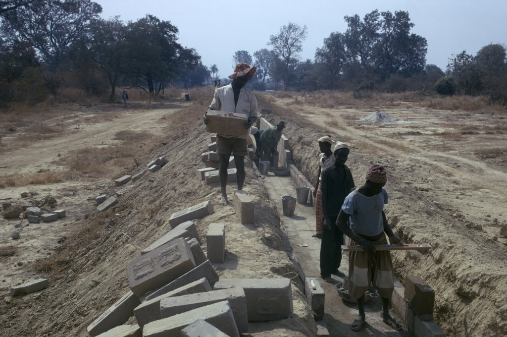 Gambia, Water, Men Building Irrigation System From River : Stock Photo