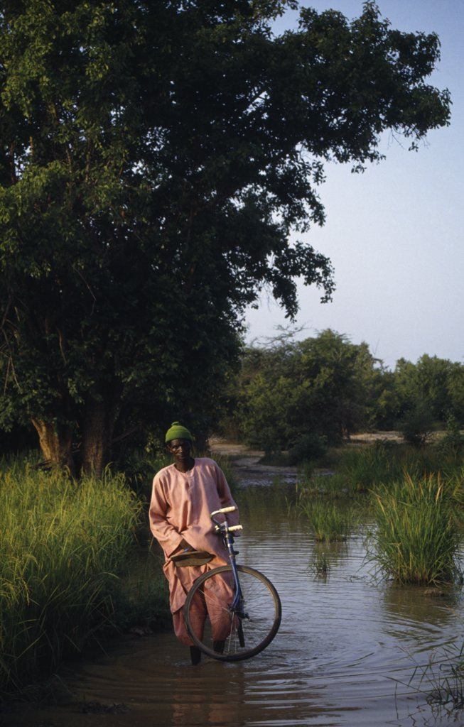 Stock Photo: 1850-16539 Gambia, People, Men, Man With Bicycle Wading Through Water