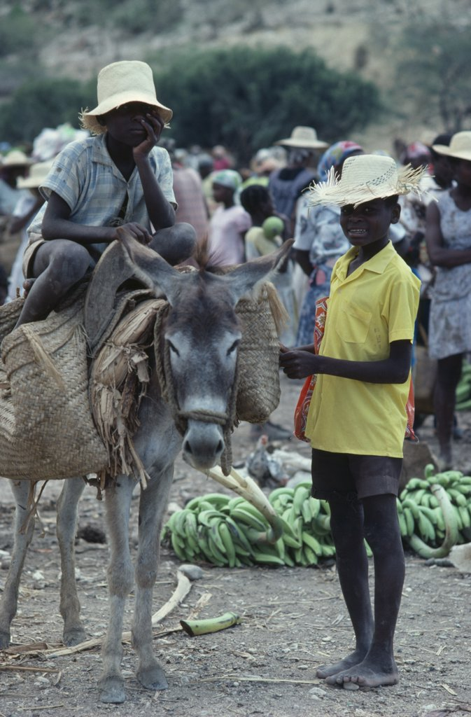 Haiti, Children, Market Scene With Two Young Boys With Donkey Carrying Basket Panniers. : Stock Photo