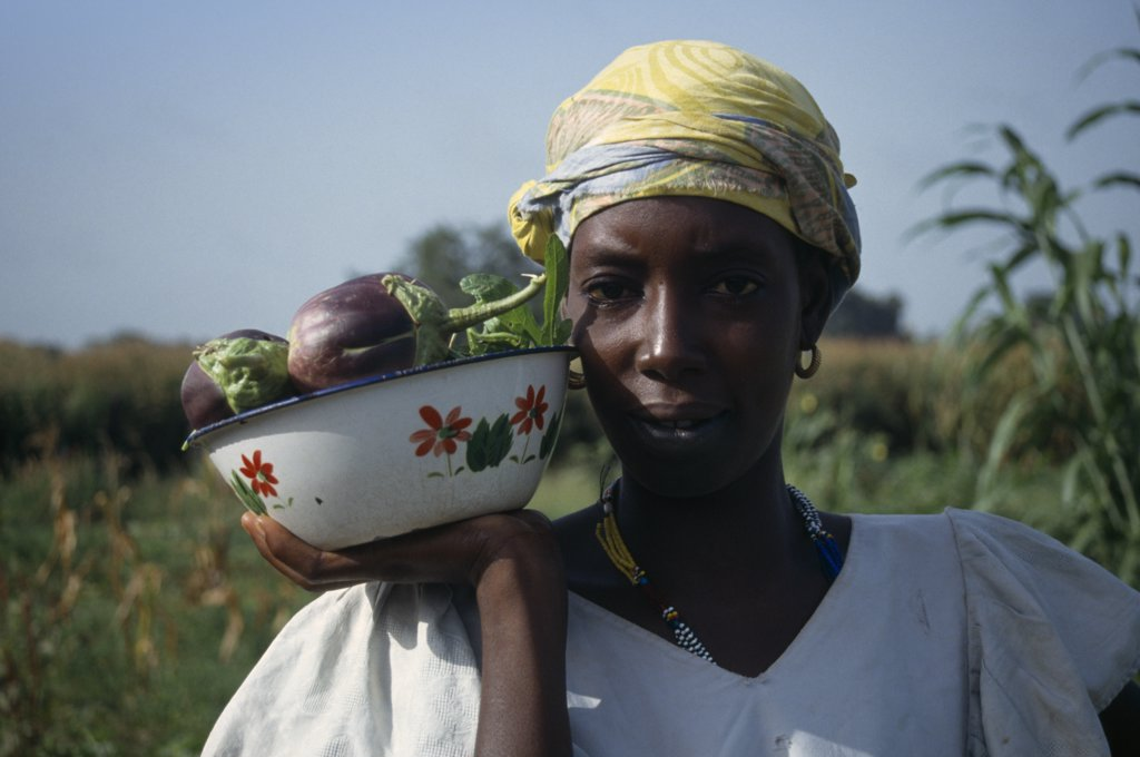 Gambia, Agriculture, Head And Shoulders Portrait Of Woman Holding Dish Of Aubergines. : Stock Photo