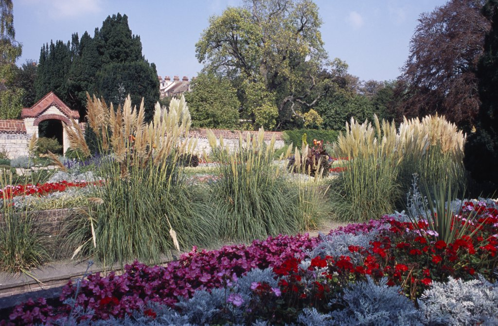 Stock Photo: 1850-17628 England, East Sussex, Lewes, Southover Grange Gardens. Colourful Flower Bedding Displays