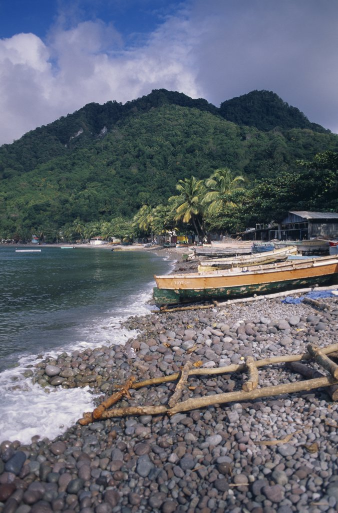 Dominica, Windward Islands, Soufriere Bay, Scotts Head Fishing Village. View Across Stoney Beach Lined With Wooden Fishing Boats And Huts Towards Palm Trees And Tree Covered Hillside : Stock Photo