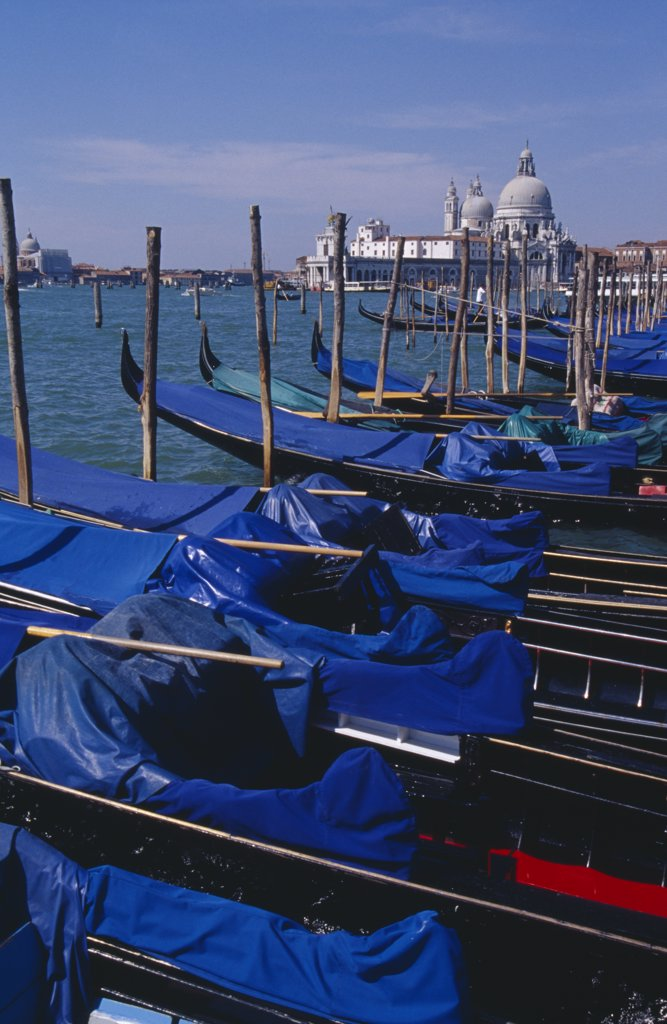 Stock Photo: 1850-19520 Italy, Veneto, Venice, Line Of Gondolas Moored At Piazza San Marco Jetty With Santa Maria Della Salute In Distance Behind.