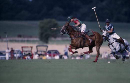 Sport, Equestrian, Polo, 'Polo Match Taking Place At Cowdray Park In Midhurst West Sussex, England' : Stock Photo