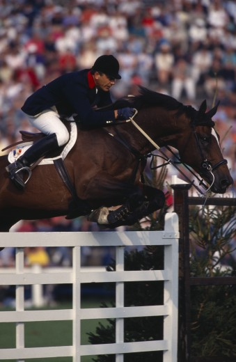 Sport , Equestrian, Show Jumping , 'French Rider Herve Godignon Competing In The 1993 Hickstead Derby, Clearing White Gates On Bay Horse.' : Stock Photo