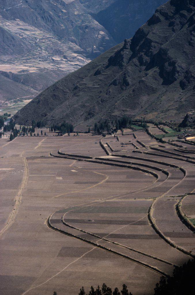 Stock Photo: 1850-21400 Peru, Cusco, Agriculture, Contour Ploughing And Terraces Near Pisac.