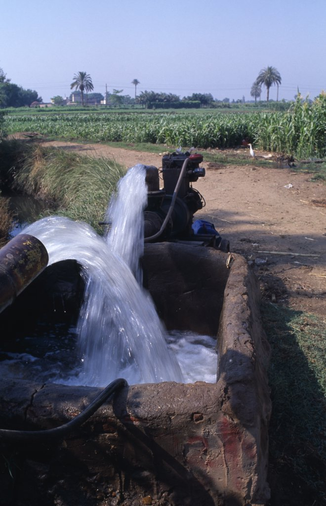 Egypt, Nile Delta, A Diesel Powered Water Pump With A Field Of Crops Behind : Stock Photo