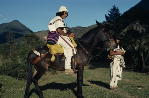 Colombia, Sierra Nevada De Santa Marta, Ika, Ika Leader Vicente Villafana On Mule With Another Man Standing At His Side  Both In Traditional Dress Of Woven Wool&Cotton Mantas Cloaks  Mochilas Shoulder Carrying Bags. Vicente Wears A Woven Cactus Fibre Helmet.  Arhuaco Aruaco Indigenous Tribe American Colombian Colombia Hispanic Indegent Latin America Latino Male Men Guy Scenic South America  Arhuaco Aruaco Indigenous Tribe American Colombian Columbia Hispanic Indegent Latin America Latino Male Me : Stock Photo